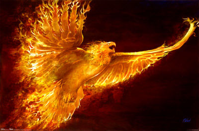 http://curezone.com/upload/Blogs/Zoebess/Phoenix_Rising.jpg