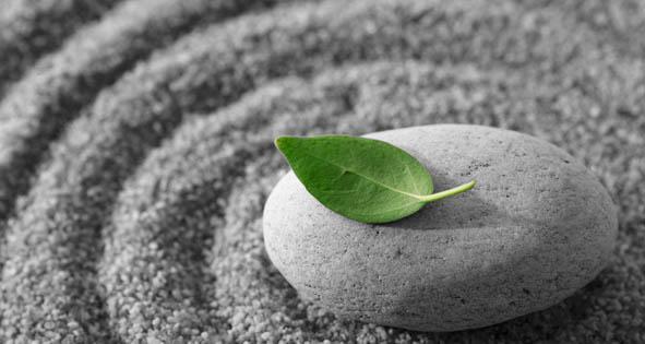 http://curezone.com/upload/Blogs/meditation_leaf.jpg