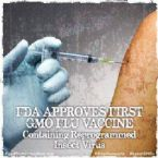 New flu vaccine made with GMOs
