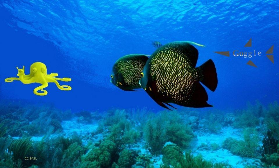fish goggle 94