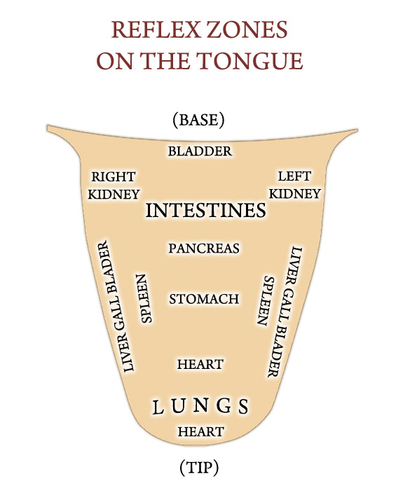 Reflex Zones on the Tongue