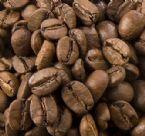 Cocoa Extract