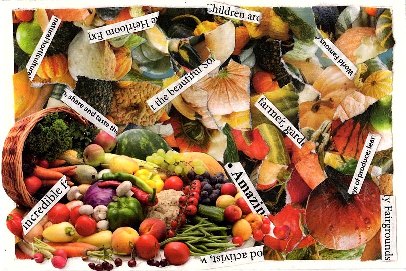 Eco Postcard Squashes 2017cz ... (Click to enlarge)