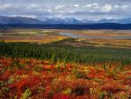 autumn Arctic Refuge