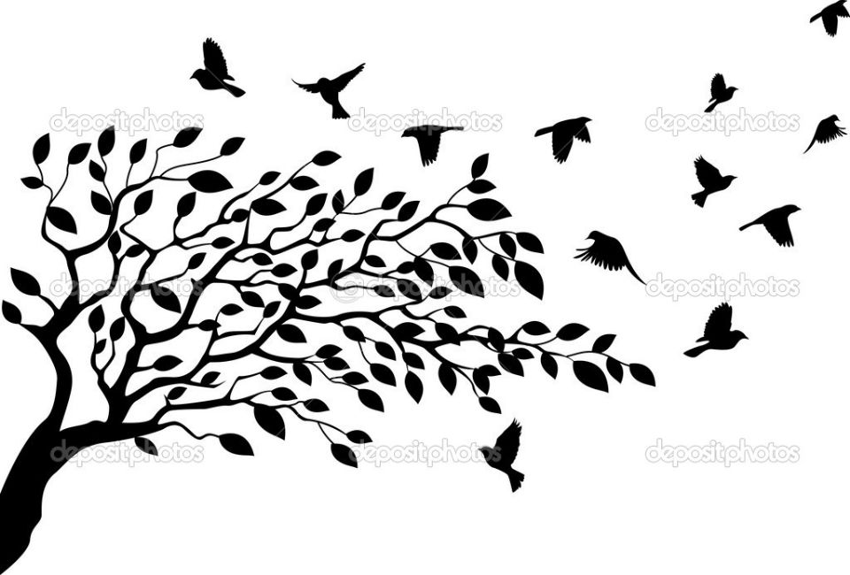 tree with birds clipart - photo #23