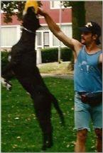 Dakota Jumping Lakota Mastino Bandogge