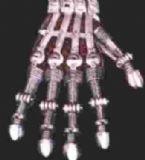 cyborg b