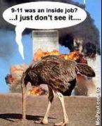 911 ostrich inside job