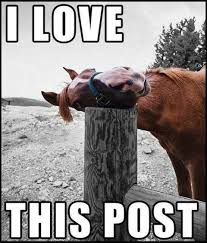 http://curezone.com/upload/Members/new03/horsepost.jpeg
