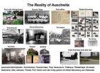 Auschwitz Reality