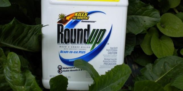 Roundup2