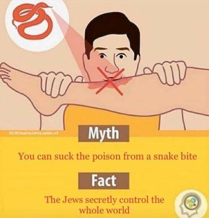 mythvsfact