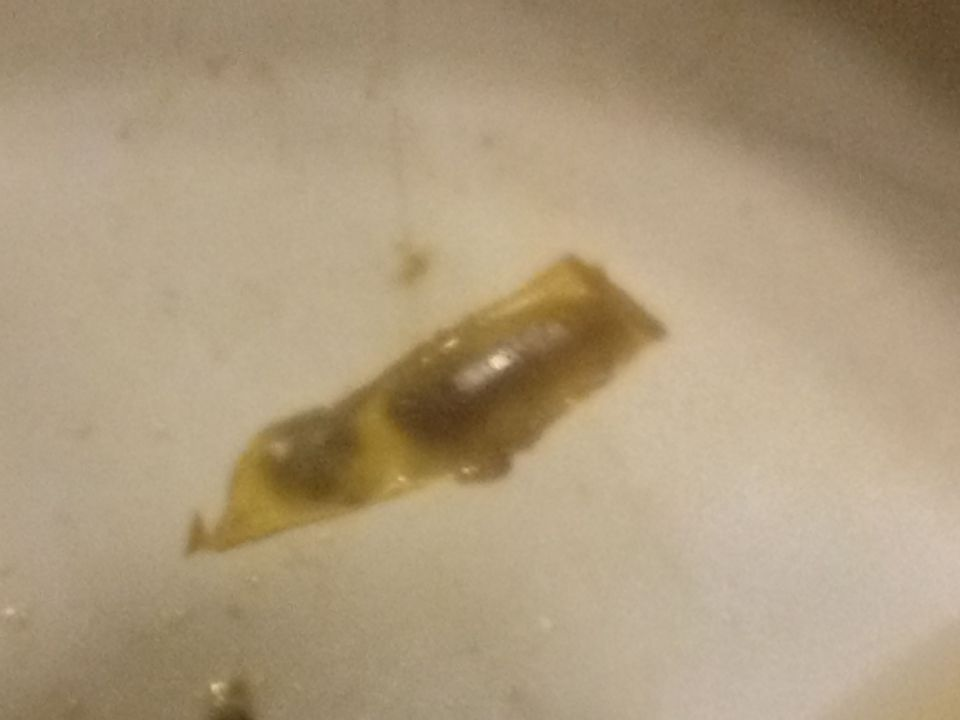 what is this? am on mms (Parasites Support Forum (Alt Med)) 12/8