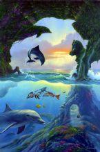 find 7 dolphins by warren