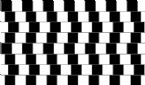 All Lines Are Straight and parallel