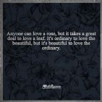 beautiful to love the ordinary