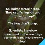 deaf frog