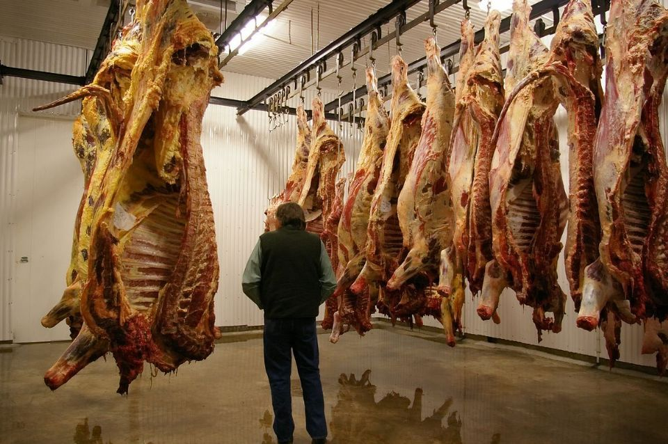 1200px Meat hanging in cooler room 01 ... (Click to enlarge)