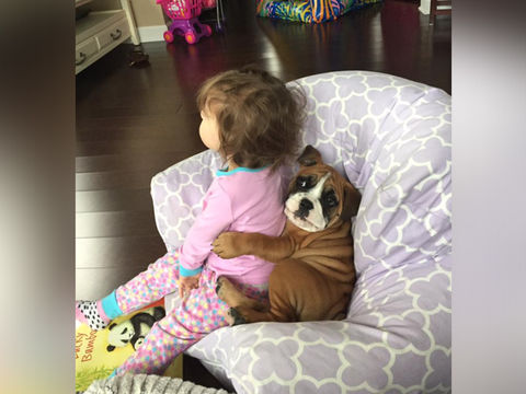 http://curezone.com/upload/_A_Forums/Ask/14138_kids_and_pets_480x360.jpg