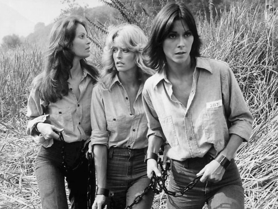 https://www.curezone.org/upload/_A_Forums/Ask/Charlie_s_Angels_1977.jpg