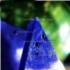 100 Seeds Laritek Garden Heriloom font b Water b font Melon Blue insid