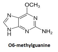http://curezone.com/upload/_C_Forums/Candida/O6_methylguanine.png