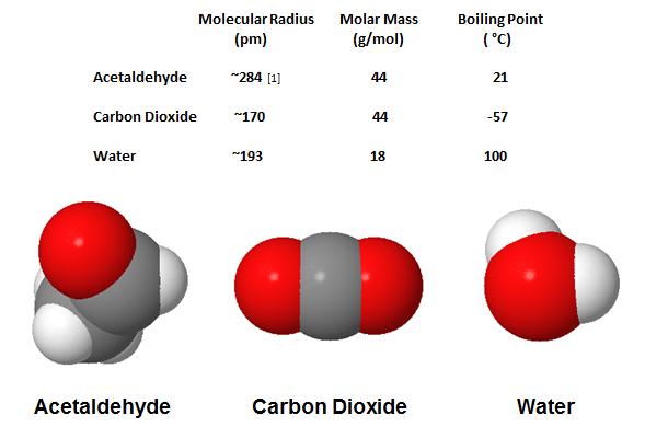 candida yeast gasoline  u2013 yeast infection tips
