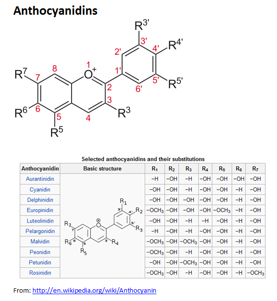 http://curezone.com/upload/_C_Forums/Candida/anthocyanidins.png