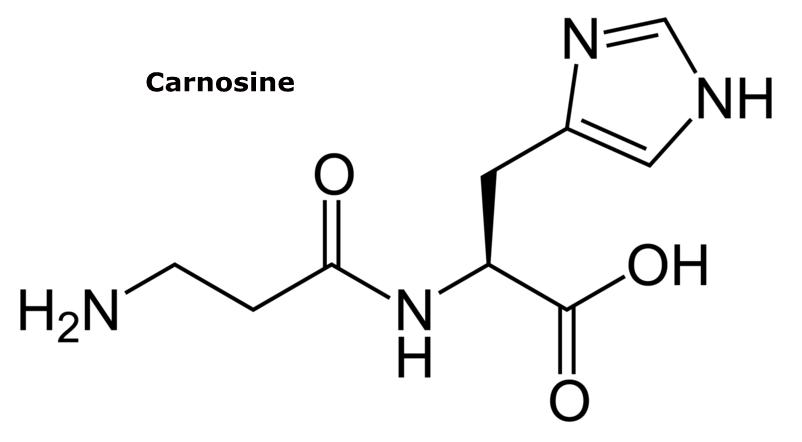 http://curezone.com/upload/_C_Forums/Candida/carnosine.png