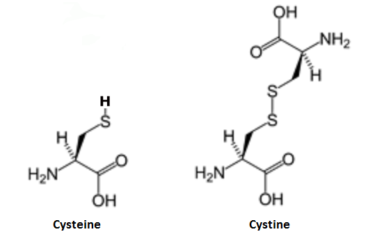 http://curezone.com/upload/_C_Forums/Candida/cysteine_cystine.png