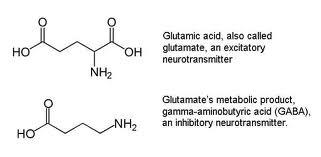 http://curezone.com/upload/_C_Forums/Candida/glutamate_gaba.jpg