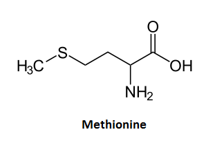 http://curezone.com/upload/_C_Forums/Candida/methionine.png