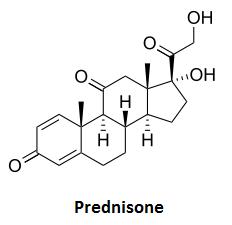 interaction between prednisone and aspirin