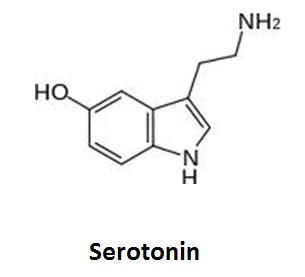 http://curezone.com/upload/_C_Forums/Candida/serotonin.png
