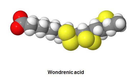 http://curezone.com/upload/_C_Forums/Candida/wondrenic_acid.png