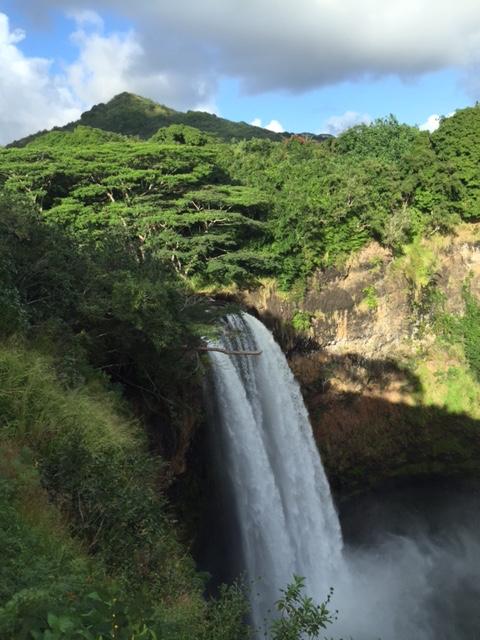 http://curezone.com/upload/_C_Forums/Chelation/Kauai.jpg