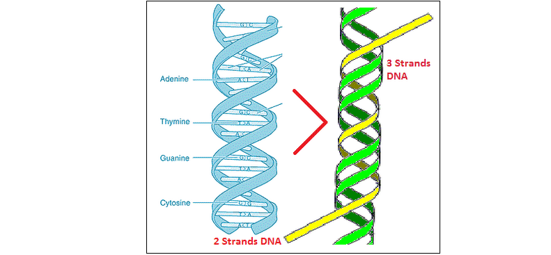 http://curezone.com/upload/_C_Forums/Conspiracy/new_3_strands_dna21.png