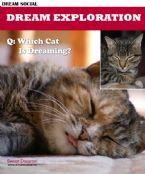 Dream Exploration