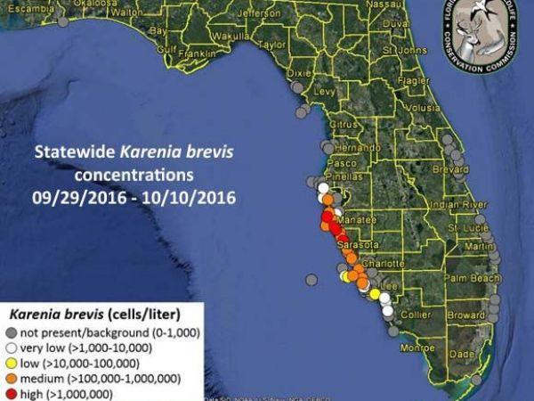 https://www.curezone.org/upload/_E_F_Forums/Environmental/red_tide_09_29_10_10_1476131411_1972.jpg