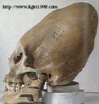 giant skulls 9