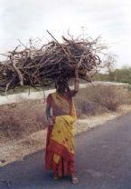sticks on head