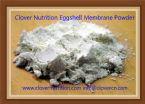 Clover Nutrition Eggshell Membran Powder