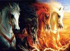 apoc horses