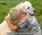 dog makes it feel better