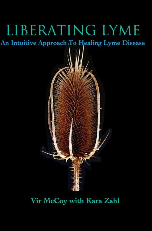 http://curezone.com/upload/_K_L_Forums/Lyme/Liberating_Lyme_Book_Cover.jpg