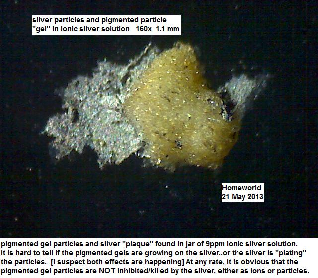 http://curezone.com/upload/_M_Forums/Morgellons/FHW/silver/Aggel21may13.jpg