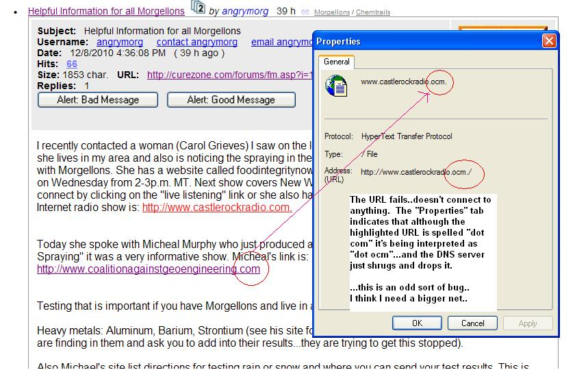 https://www.curezone.org/upload/_M_Forums/Morgellons/FHW/strange/webbug.jpg