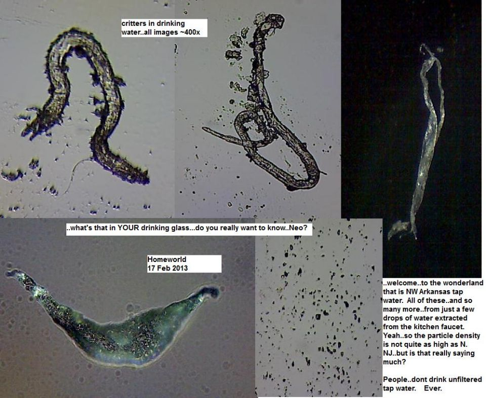 http://curezone.com/upload/_M_Forums/Morgellons/FHW/tapwater/NWA_water_17feb13.jpg