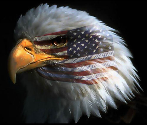 //www.curezone.org/upload/_N_Forums/News/eagle_american_flag.jpg