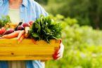 Harvesting wellness